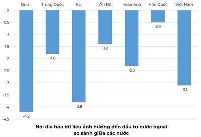 Nội địa hóa dữ liệu ảnh hưởng đến đầu tư nước ngoài (FDI.)