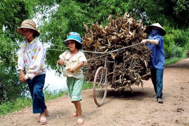 Hình minh hoạ. Hai em gái kéo xe rơm cùng mẹ ở ngoại thành Hà Nội hôm 1/7/2001