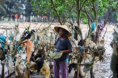 Bao nilon rác ở vùng biển Thanh Hóa.