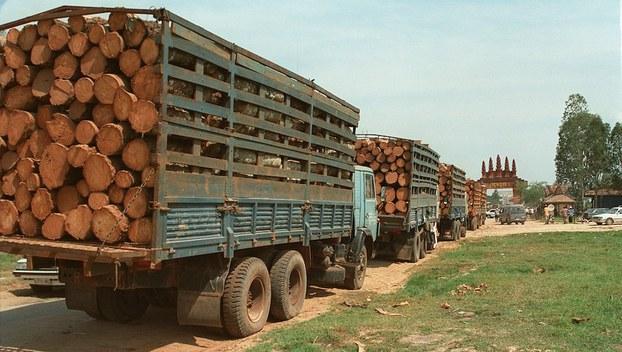 Hình minh hoạ. Những xe chở gỗ qua cửa khẩu từ Campuchia vào Việt Nam