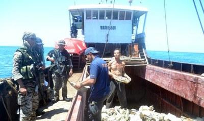 Hình minh hoạ. Hải quân Philippines kiểm tra tàu cá Trung Quốc đánh bắt nghêu khổng lồ ở bãi cạn Scarborough hôm 11/4/2012