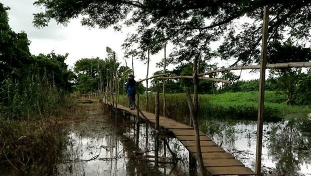 Cầu từ làng Chăm ra sông Hậu