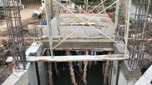 Mặn đã xâm nhập vào từng đồng ruộng chính quyền mới bắt đầu xây cống ngăn mặn