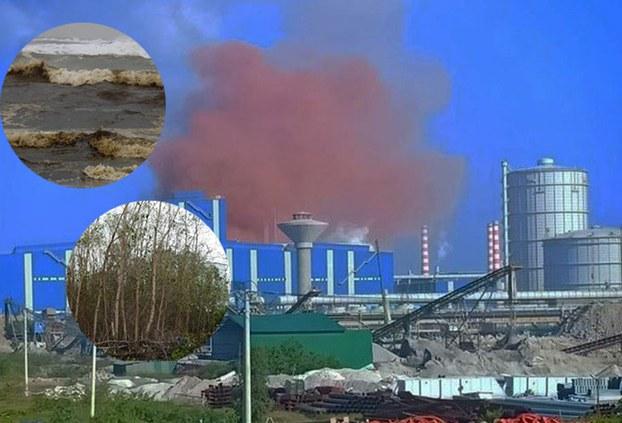 Liên tiếp nhiều tháng qua, người dân huyện Bình Sơn phát hiện quanh nhà máy thép Hòa Phát môi trường ô nhiễm nặng khi nước biển chuyển màu, cây chết và khói hồng bất thường xuất hiện