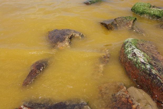 Nước biển màu vàng ở ven bờ cảng Chân Mây - Lăng cô.