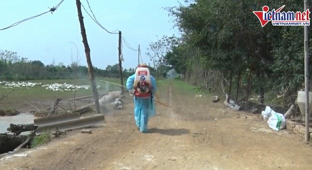 1 ổ dịch cúm A/H5N6 được phát hiện tại huyện Chương Mỹ, Hà Nội và đã tiêu hủy gần 7000 con gia cầm.
