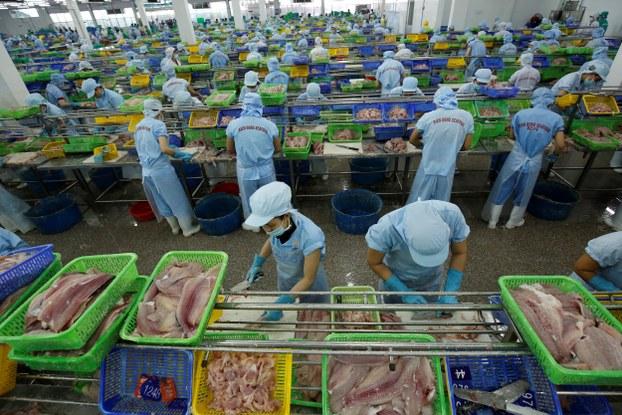 Doanh nghiệp chế biến và xuất khẩu thuỷ sản của Việt Nam. (Ảnh minh hoạ)