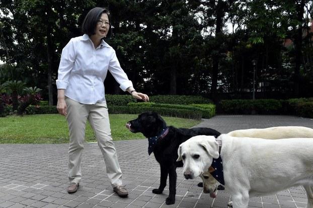 Tổng thống Đài Loan Thái Anh Văn và những chú chó tại tư gia hôm 23/6/2018.
